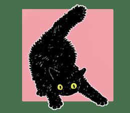 Black & White CATS sticker #303752