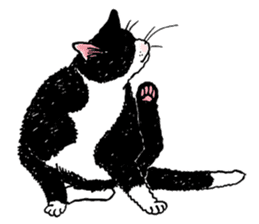 Black & White CATS sticker #303753
