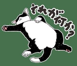 Black & White CATS sticker #303759