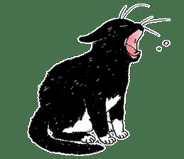 Black & White CATS sticker #303772