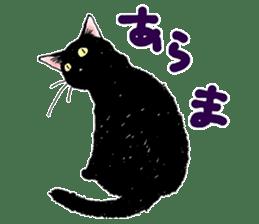 Black & White CATS sticker #303773
