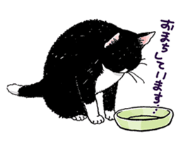 Black & White CATS sticker #303774