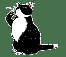 Black & White CATS sticker #303775