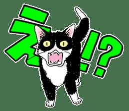 Black & White CATS sticker #303776