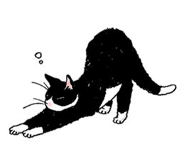 Black & White CATS sticker #303777