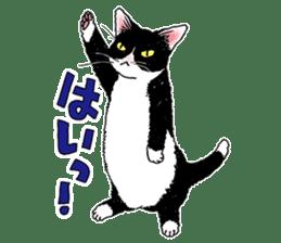 Black & White CATS sticker #303782
