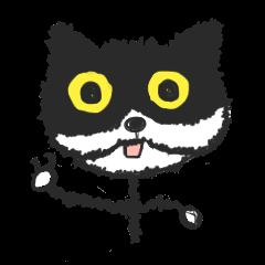 KEN the CAT, part II