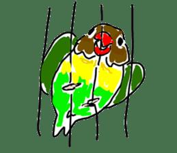 Graffiti LOVEBIRD sticker #310346