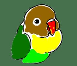 Graffiti LOVEBIRD sticker #310366