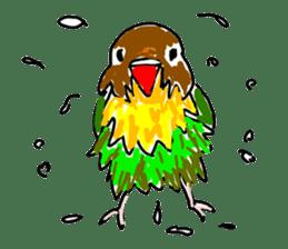 Graffiti LOVEBIRD sticker #310378