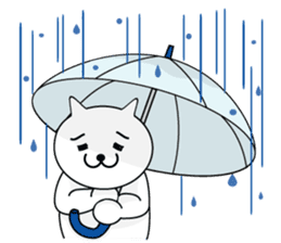 cat sticker #311669