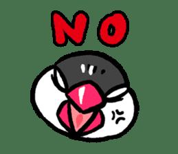 Java sparrow-chan sticker #315234