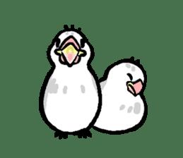 Java sparrow-chan sticker #315246