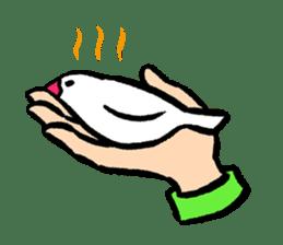 Java sparrow-chan sticker #315263