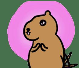 PDOG~Prairie dog~ sticker #323318