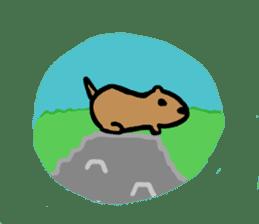 PDOG~Prairie dog~ sticker #323322