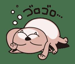 Cat Cat Gong Show! sticker #324469