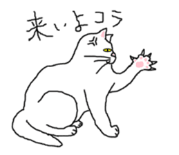 "wrote in the mouse ""white cat Mimi"" sticker #325071"