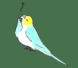 Cute Little Parakeet - HAPPY LIFE sticker #325630