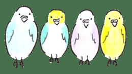 Cute Little Parakeet - HAPPY LIFE sticker #325635