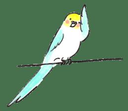 Cute Little Parakeet - HAPPY LIFE sticker #325649