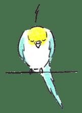 Cute Little Parakeet - HAPPY LIFE sticker #325663