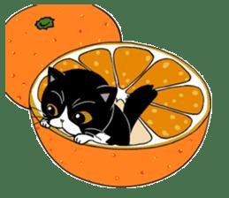 Panda-cat Mink(Japanese  version) sticker #330450