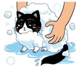 Panda-cat Mink(Japanese  version) sticker #330451