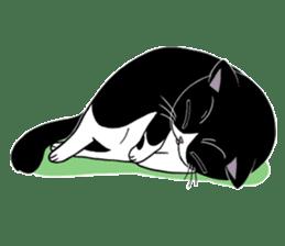 Panda-cat Mink(Japanese  version) sticker #330455