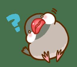 Chubby java sparrow sticker #335191