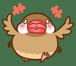 Chubby java sparrow sticker #335196