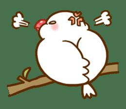 Chubby java sparrow sticker #335197