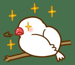 Chubby java sparrow sticker #335204