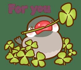 Chubby java sparrow sticker #335211
