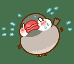 Chubby java sparrow sticker #335221