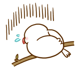 Chubby java sparrow sticker #335222