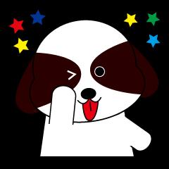 Shih Tzu dog Seachan