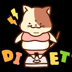 dietter MARUMI