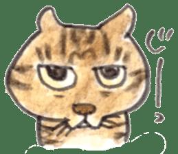 momo cat stamp sticker #352995