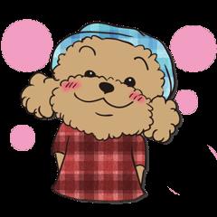 Waffle of poodle