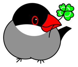 Love Bird Java sparrow sticker #357556