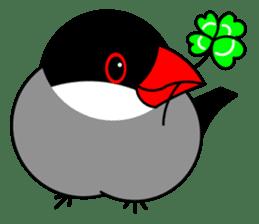 Love Bird Java sparrow sticker #357556