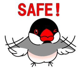 Love Bird Java sparrow sticker #357560