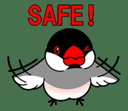 Love Bird Java sparrow sticker #357560