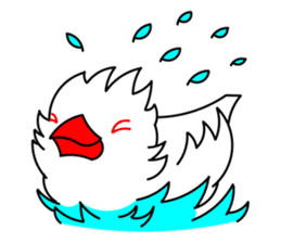 Love Bird Java sparrow sticker #357563