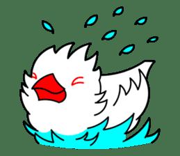 Love Bird Java sparrow sticker #357563