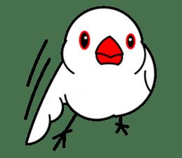 Love Bird Java sparrow sticker #357567
