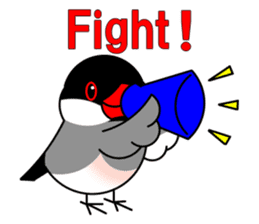 Love Bird Java sparrow sticker #357571