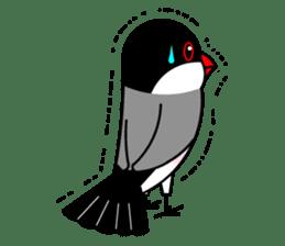 Love Bird Java sparrow sticker #357583