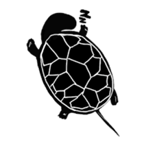 Tortoise life sticker #360067